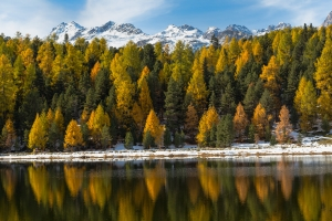 Swiss Lake In The Fall