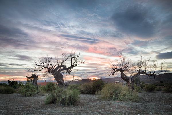 Brian-Opyd-Spain-Sunset.jpg